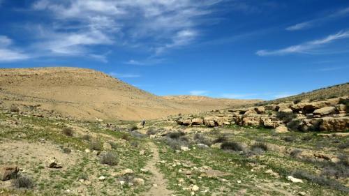 טיול חורף להר הנגב - תשע``ח
